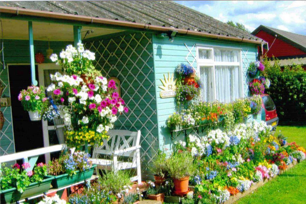 runneruphangingbasketwendyandgordon 10 Fascinating and Unique Ideas for Portable Gardens