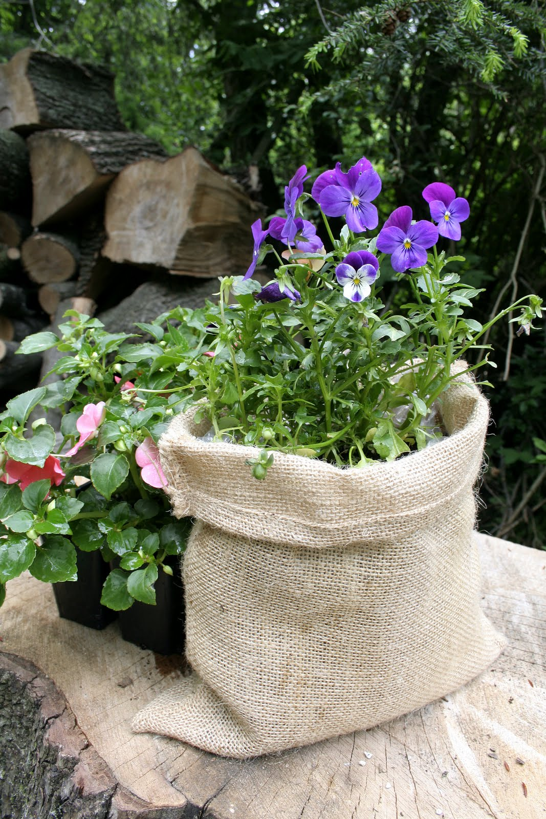 sack_planter 10 Fascinating and Unique Ideas for Portable Gardens