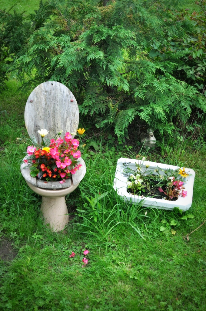 toilet-basin-planters 10 Fascinating and Unique Ideas for Portable Gardens
