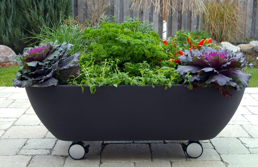 tumblr 10 Fascinating and Unique Ideas for Portable Gardens