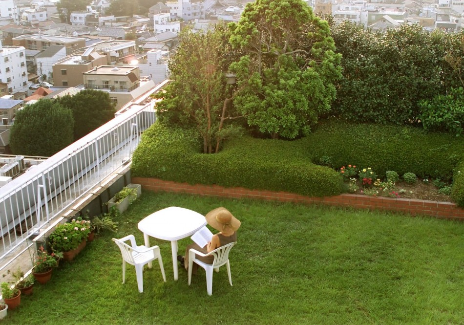 urban-garden Decorating The Roof To Look Like A Paradise
