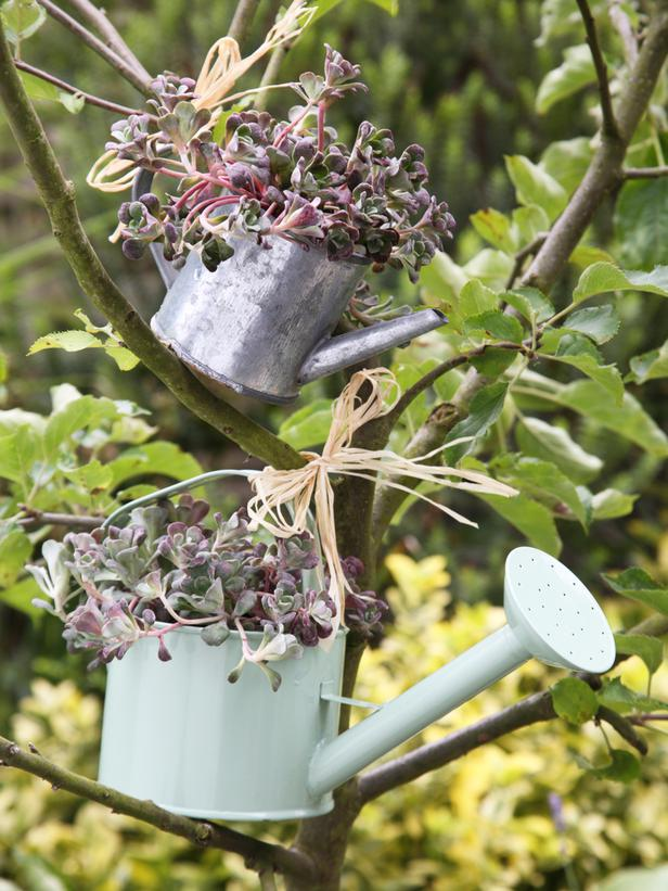 watering-cans_s3x4_lg 10 Fascinating and Unique Ideas for Portable Gardens