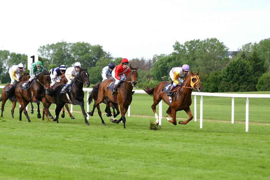 """Horse-racing-2 Horse Racing Or As It Is Titled """"Sport Of Kings"""""""