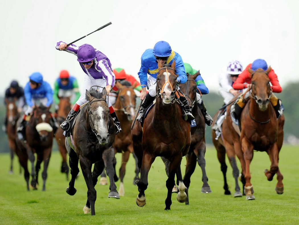 """HorseRacing Horse Racing Or As It Is Titled """"Sport Of Kings"""""""