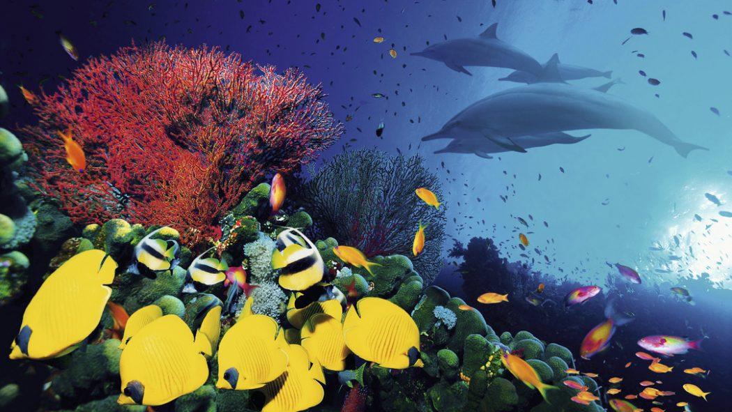 Hurghada. Top 10 Most Luxurious Honeymoon Destinations