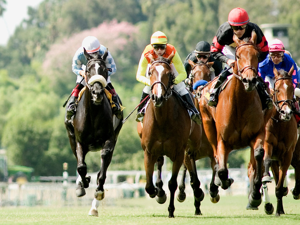 """Stretchrun_Horse_Racing_Wallpaper Horse Racing Or As It Is Titled """"Sport Of Kings"""""""