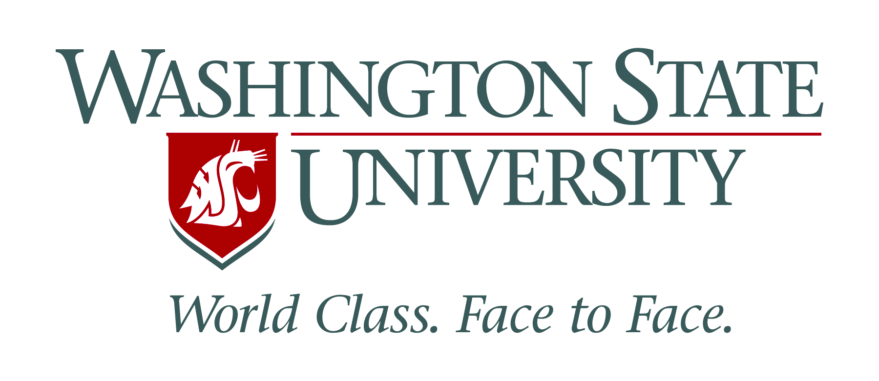 WSU_SIGNATURE_4_COLOR_12_INCH-1 Top 15 MBA Programs & Business Schools