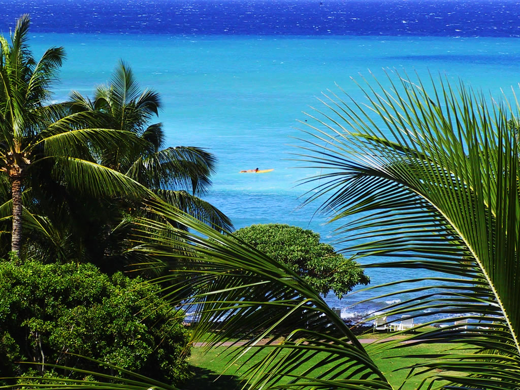 hawaii-of-the-tallest-mountains-in-world Top 10 Most Luxurious Honeymoon Destinations