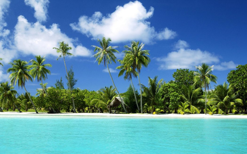 island-sea-beach-sand-desktop-wallpapers-palm-tree-l-a-ibackgroundz.com_ Top 10 Places to Visit Next Year!