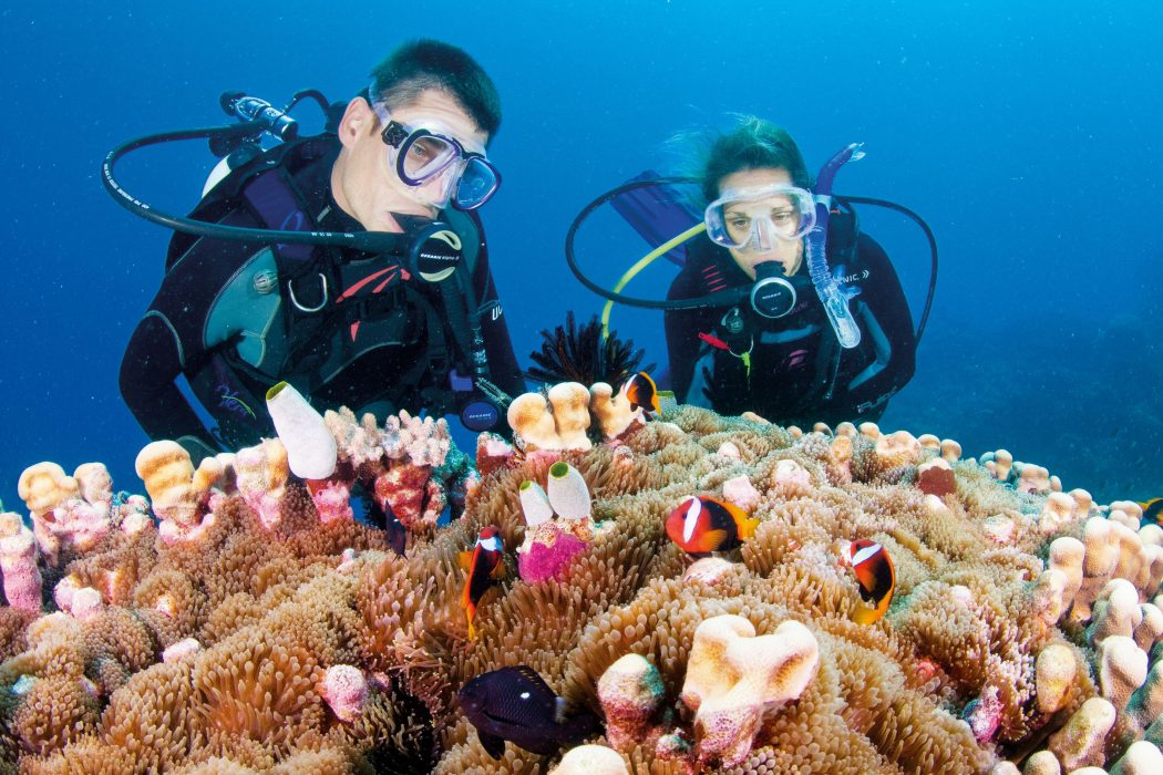 reefs Top 10 Places to Visit in 2014