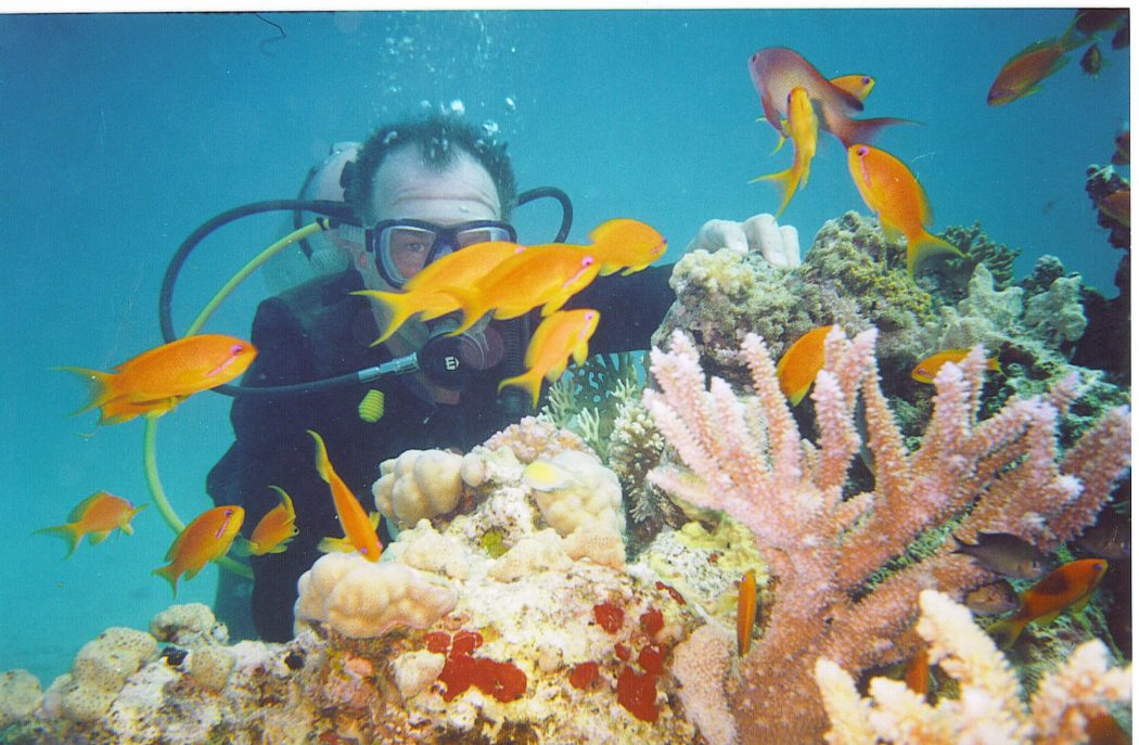 rick-red-fish-coral Top 10 Most Luxurious Honeymoon Destinations