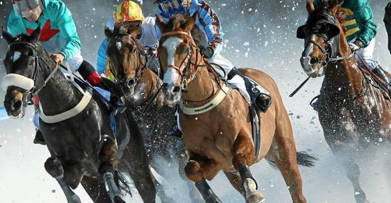 """Photo of Horse Racing Or As It Is Titled """"Sport Of Kings"""""""