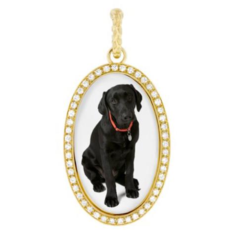 бижута-за-кучета-2-475x475 Dress Your Dog In Jewels
