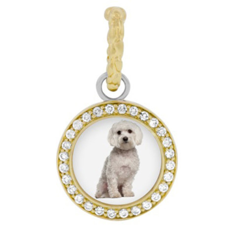 бижута-за-кучета-3-475x475 Dress Your Dog In Jewels