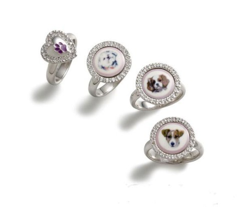 1287110941859-475x413 Dress Your Dog In Jewels