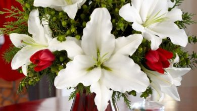 Photo of How to Decorate Your Home Using Flowers