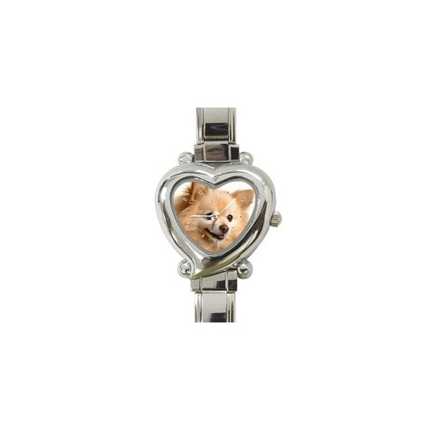 41Ol1YyeEML._SL960_AA960_-475x475 Dress Your Dog In Jewels