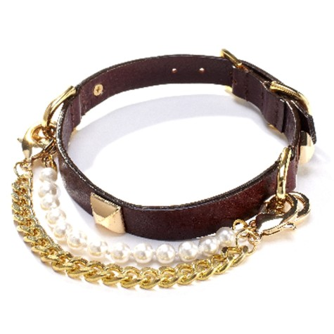451-475x475 Dress Your Dog In Jewels