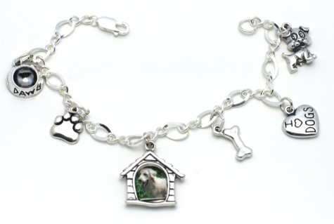 81-475x319 Dress Your Dog In Jewels