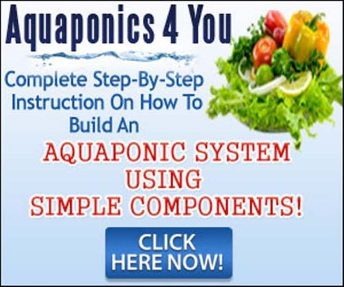 Aquaponics4You Organic Gardening Secret for Growing Plants Abundantly and Quickly