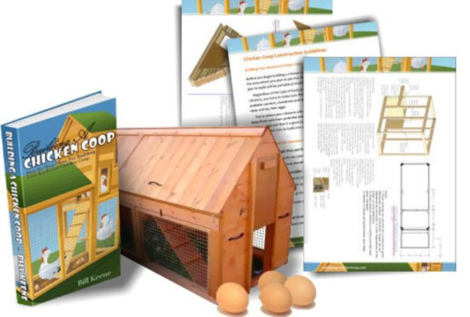 Building-A-Chicken-Coop-Review How to Build Your Own Inexpensive Chicken Coop Easily