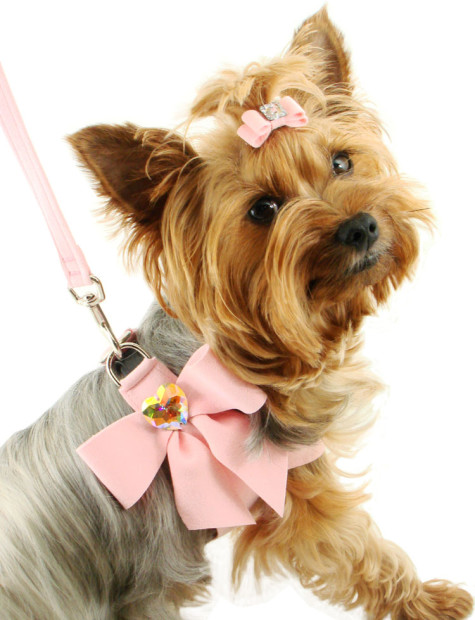 Dog-Harness-AC565M1-Designer-Pet-Harness-My-Sweet-Bow-475x620 Dress Your Dog In Jewels