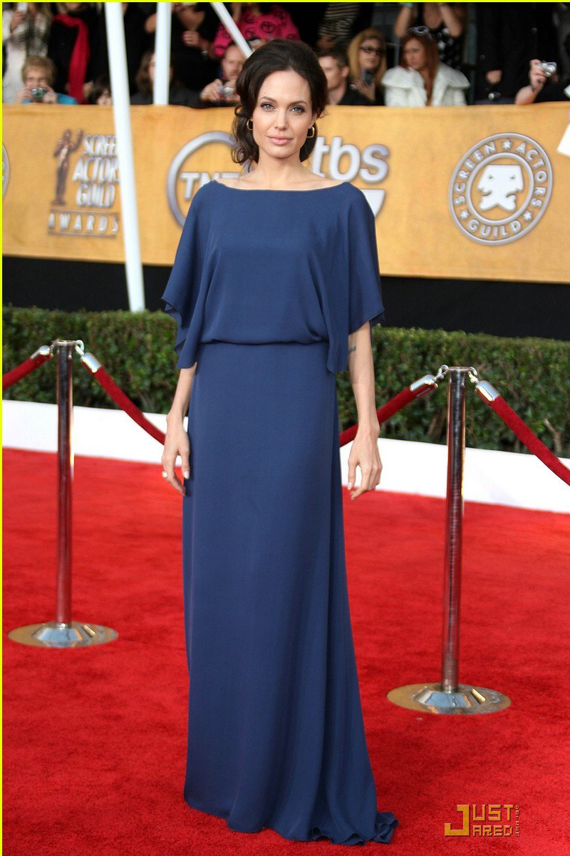 Free-Shipping-font-b-Angelina-b-font-font-b-Jolie-b-font-Sheath-Bateau-Backless-Chiffon The Most Famous Celebrities Clothing Brands
