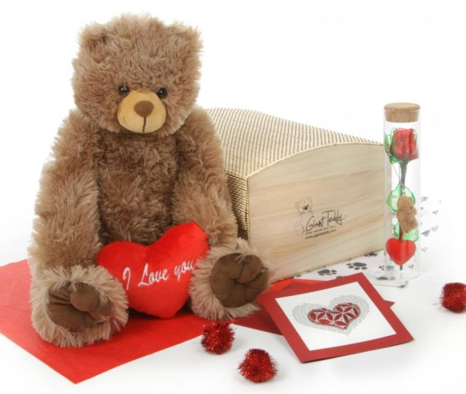Heart-Conqueror-Bear-Hug-Care-Package-Sweetie-Heart-Tubs-mocha-brown-teddy-bear How to Choose Birthday Care Package