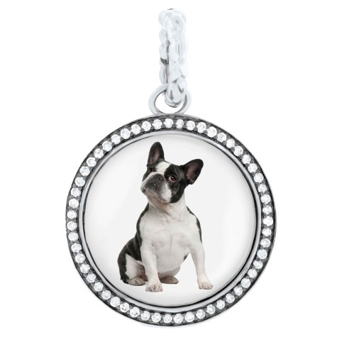 Hund-Charm-475x475 Dress Your Dog In Jewels