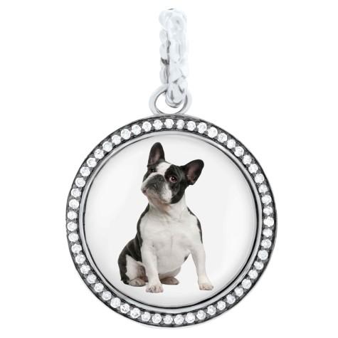 Hund-Charm-475x475 Dress Your Dog In Jewels