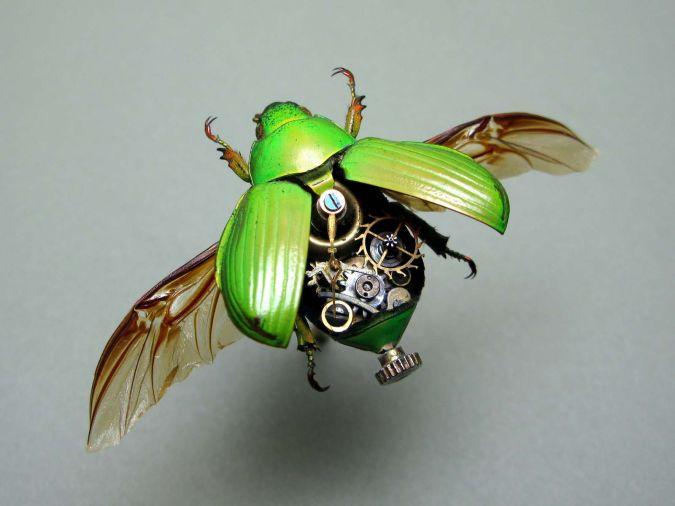Mechanical-Beetle How do Robo-Bugs Look Like?