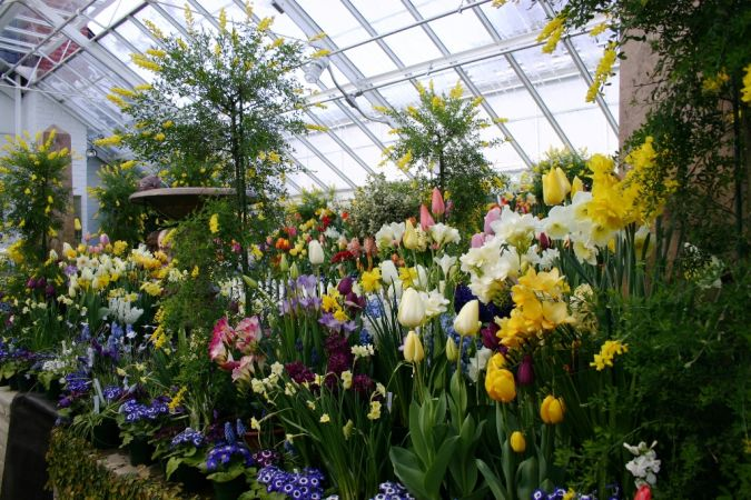 Smith_botanic_garden_greenhouse Build Your Own Greenhouse on This Weekend