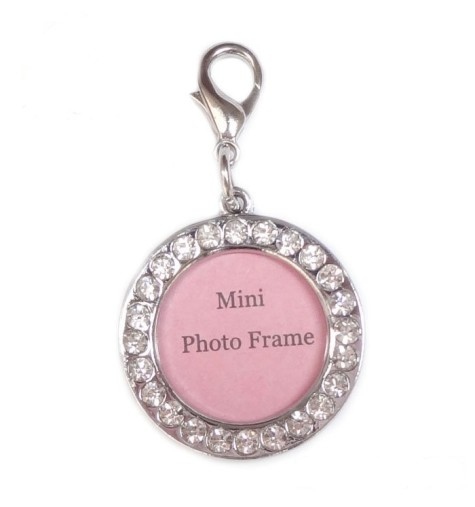 Top-selling-Free-shipping-100pcs-assorted-size-fashion-crystal-font-b-pendant-b-font-pet-frame-475x507 Dress Your Dog In Jewels