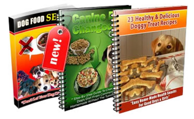 """bronze-2 How to Protect Your Dog Using """" Dog Food Secrets """""""