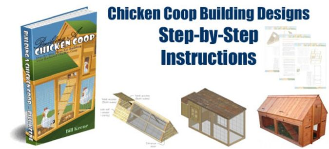 building-chicken-coop How to Build Your Own Inexpensive Chicken Coop Easily
