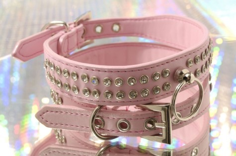 crown_jewels_collar_pink_detail___61615.1308517557.1280.1280-475x315 Dress Your Dog In Jewels