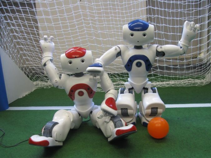 goal What Can Humanoid Robots Do?!