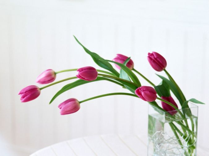 home-flower-for-interior-home-design How to Decorate Your Home Using Flowers