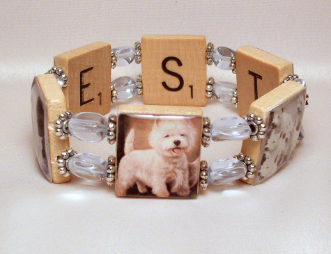 il_fullxfull.371374787_13le-475x365 Dress Your Dog In Jewels