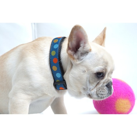 isabella-canes-ribbon-dog-collar-blue-dots-xs-d-201203071711485171101631-475x475 Dress Your Dog In Jewels