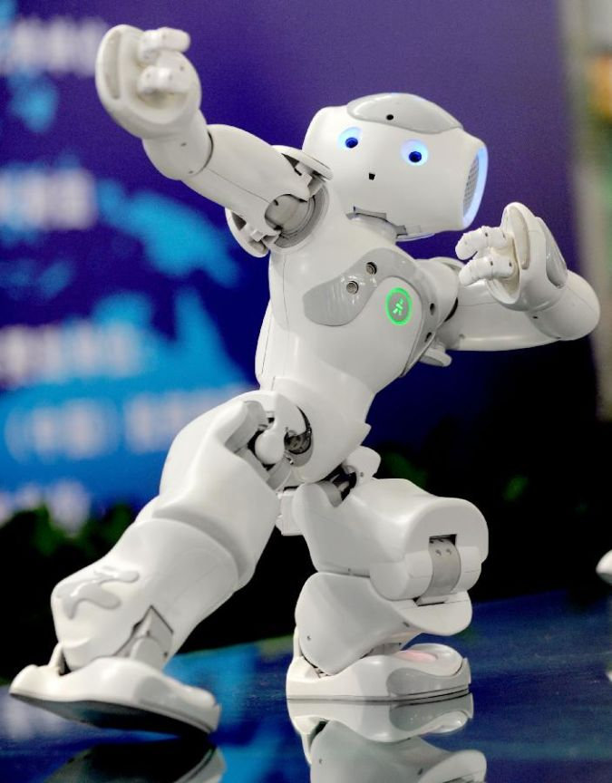 nao. What Can Humanoid Robots Do?!