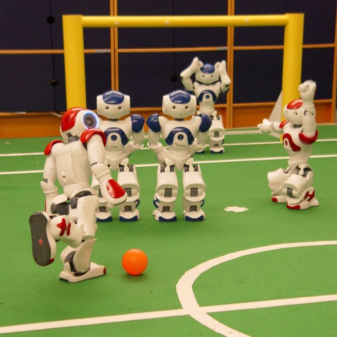playing What Can Humanoid Robots Do?!