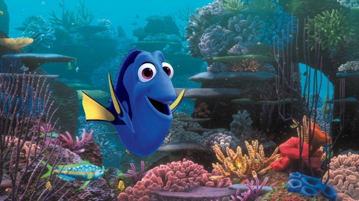 Dory2 What Are Best Movies that You Can Watch?