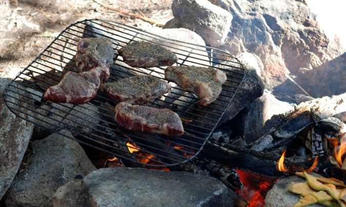Steak-Shealor What Is the Importance of Survival Courses?