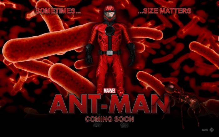 ant-man-movie What Are Best Movies that You Can Watch?