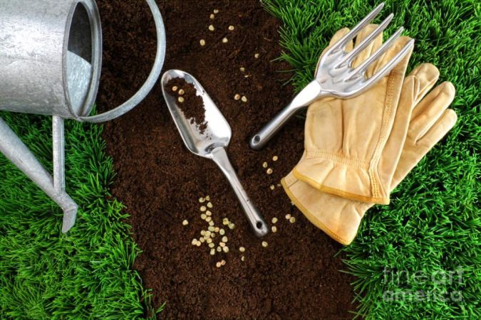 assortment-of-garden-tools-on-earth How to Fight Pests Using Organic Pest Control