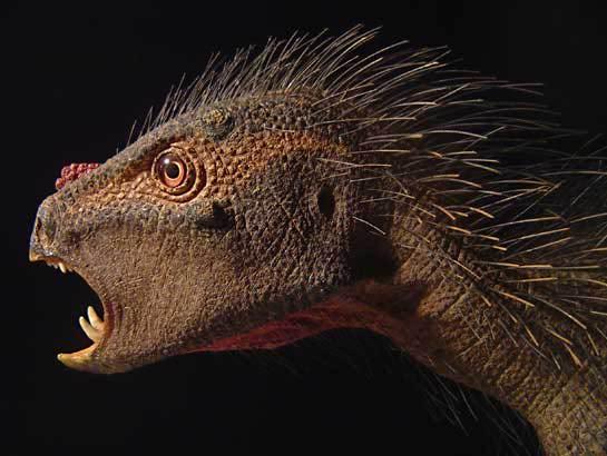 pegomastax Top 15 Ugliest Animals
