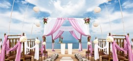 pink-wedding-theme