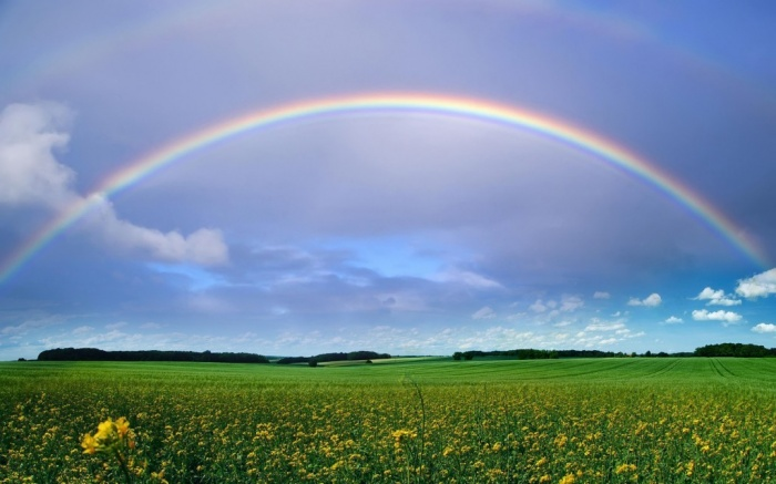 real_rainbow_clipart_wallpaper Top 12 Unforgettable Things to Do in Krakow