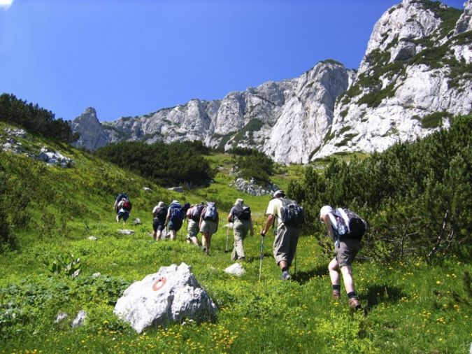 walk What Is the Importance of Survival Courses?